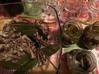 Paddenstoelen ingemaakt in olijfolie - Funghi sott'olio