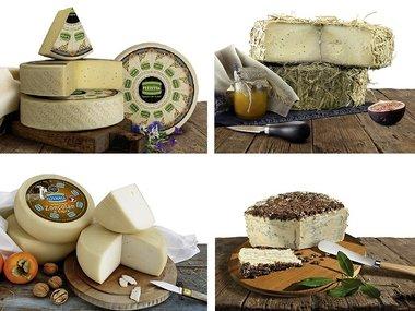 Kaasplankje compleet – 4 Italiaanse kazen – quattro formaggi