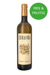 Frisse en fruitige witte wijn Pinot Grigio Italiaans
