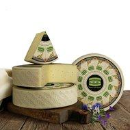 Italiaanse oude kaas Montasio Stravecchio